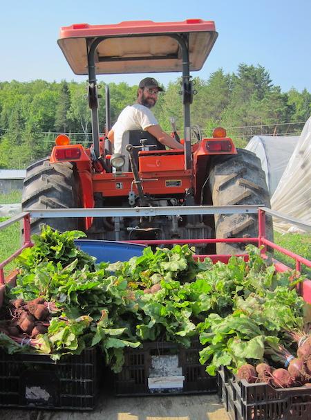 Richard with the harvest wagon / Richard avec le chariot de récolte
