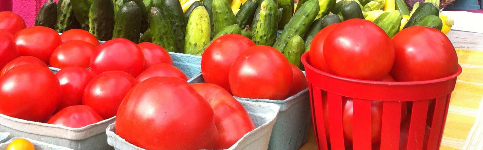 Lève-tôt Organic Farm